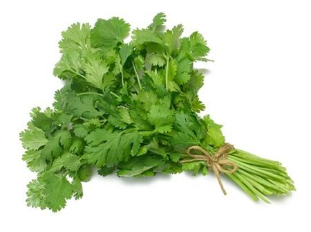 Vietnamese coriander - Necessary Spice to Cook Vietnamese Food