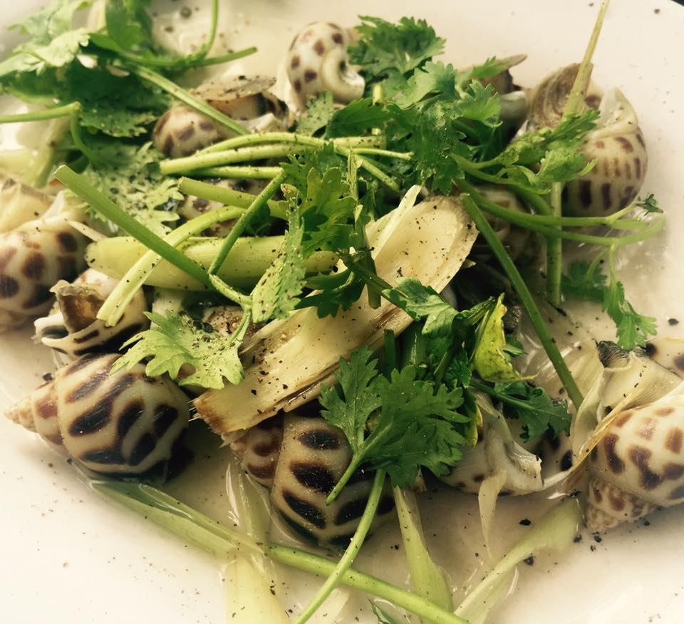 Snail steamed