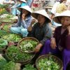 Daily life at Hoi An market