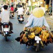 Daily Traffic in Saigon