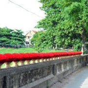 The path on the side of Tinh Tam Lake, Hue Ancient City